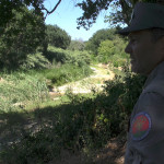 Indagini alluvione di Senigallia: sopralluogo Carabinieri Forestali su argini del Misa