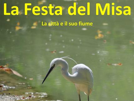 La Festa del Misa