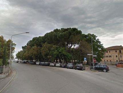 La pineta a fianco della stazione ferroviaria di Senigallia, tra via Poerio e viale Bonopera