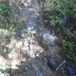 I rifiuti abbandonati lungo strada dei Vasari a San Silvestro di Senigallia