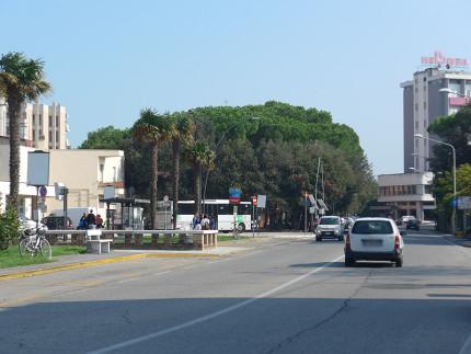 La pineta in viale Bonopera a Senigallia