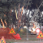Operai al lavoro per tagliare gli alberi vicino alla stazione di Senigallia