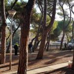 Polizia Municipale durante le verifiche al cantiere per il taglio degli alberi in stazione a Senigallia
