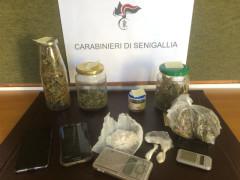 Sequestro sostanze stupefacenti da parte dei Carabinieri di Senigallia