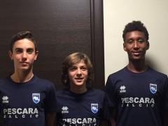 Veroli, Rossi e Gatti