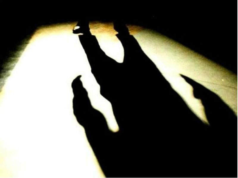 ladri, furti, malviventi