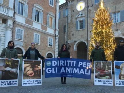 Giornata per i diritti degli animali