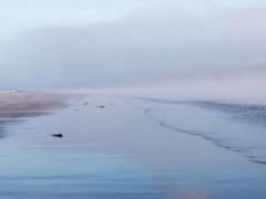 Il mare d'inverno raccontato da Camillo Langone