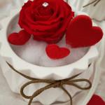 Fiori e idee regalo per San Valentino al Vivaio Piantaviva di Senigallia