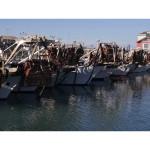 Pescherecci al porto di Senigallia