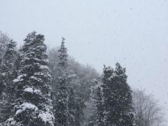 Neve a Scapezzano