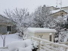 Neve a Senigallia, Borgo Ribeca