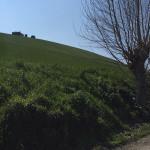 Smottamenti sulla collina di Filetto di Senigallia