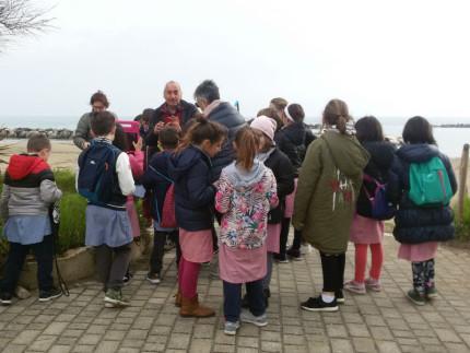 Terza classe della scuola primaria di Cesano in visita sul litorale di ponente di Senigallia