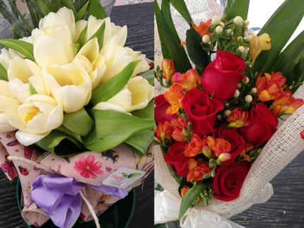 I fiori del vivaio Piantaviva di Senigallia