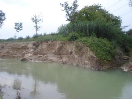 Foto del 13.giugno 2015 in località Marazzana nel punto in cui il Sambuco si immette nel Misa
