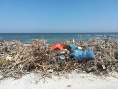 degrado sulla spiaggia di Montemarciano
