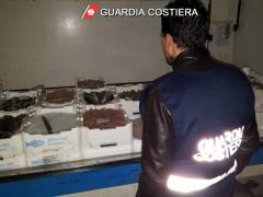Controlli Guardia Costiera su filiera ittica nelle Marche