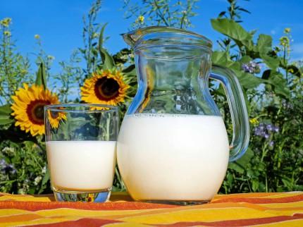 Caraffa e bicchiere di latte