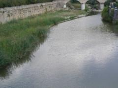 fiume Metauro