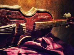 Violino in pietra dedicato a Rossini