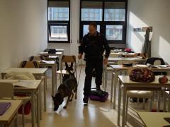 Controlli antidroga dei Carabinieri al campus scolastico di Senigallia