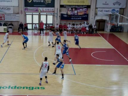 Goldengas Pallacanestro Senigallia 2018-2019