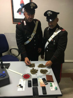 Marijuana sequestrata dai Carabinieri ai giardini Morandi di Senigallia
