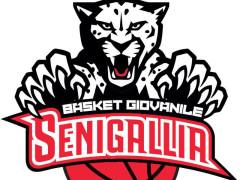 Basket Giovanile Senigallia, logo
