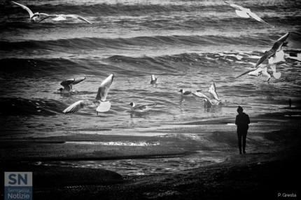 Foto di Paolo Gresta