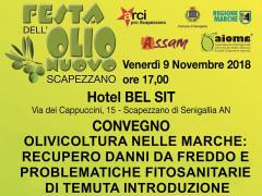 Convegno sull'olivicoltura nelle Marche alla Festa dell'Olio Nuovo 2018