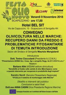 Convegno sull'olivicoltura nelle Marche alla Festa dell'Olio Nuovo 2018 - locandina