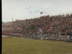 Tifosi Vigor 1982