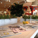 Il punto vendita NaturaSì - La Terra e il Cielo di Senigallia