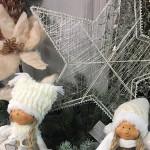 Idee regalo e composizioni per Natale al Vivaio Piantaviva di Senigallia