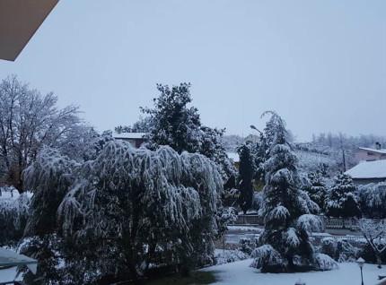 Neve ad Ostra