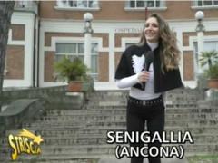 Striscia la Notizia a Senigallia