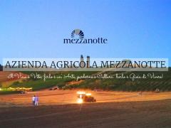 Azienda agricola Cantina Mezzanotte
