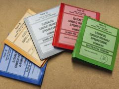 Schede per l'elezione del Consiglio provinciale