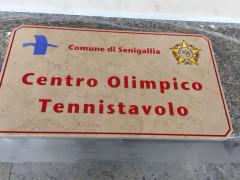 Tennistavolo Senigallia