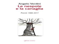 Copertina libro Angelo Verdini