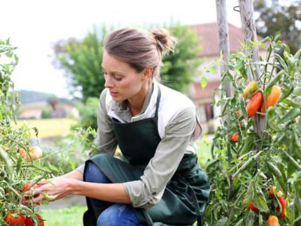 Donne imprenditrici, donne in agricoltura