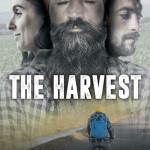The Harvest – Il raccolto