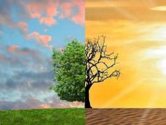 Clima, cambiamenti climatici
