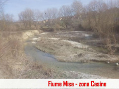 Fiume Misa a Ostra