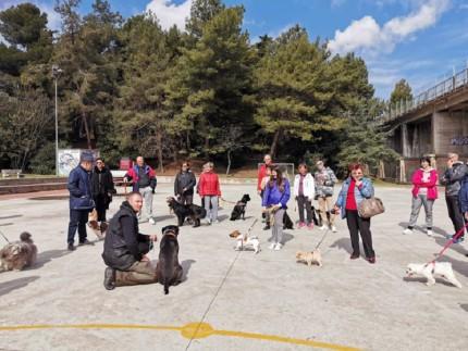 corso per proprietari cani a Falconara