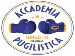 Accademia Pugilistica, logo