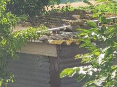 Capannone in amianto nelle campagne di Senigallia