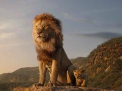 Il Re Leone - scena dal film del 2019