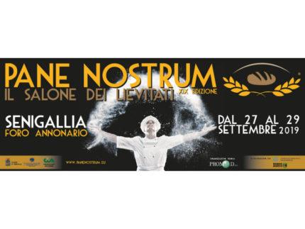Pane Nostrum a Senigallia
